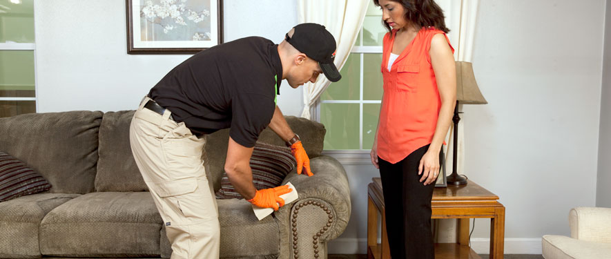 Center Point, AL carpet upholstery cleaning